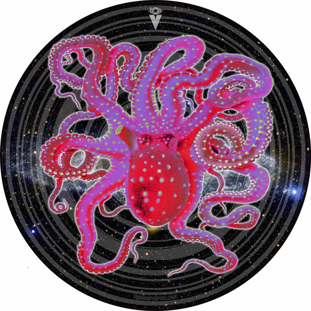 Thrift Shop Space Octopus graphic drum skin for 14