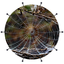 spider web bass face banner style drum head art