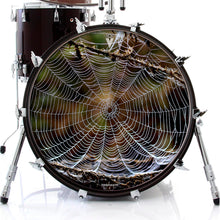 spider web graphic drum skin on bass drum
