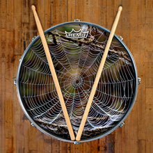 spider web Remo drum head on snare drum