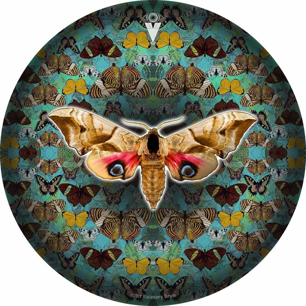The Moth graphic drum skin 18