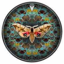 The Moth graphic drum skin installed on bass drum head by Visionary Drum; green drum art