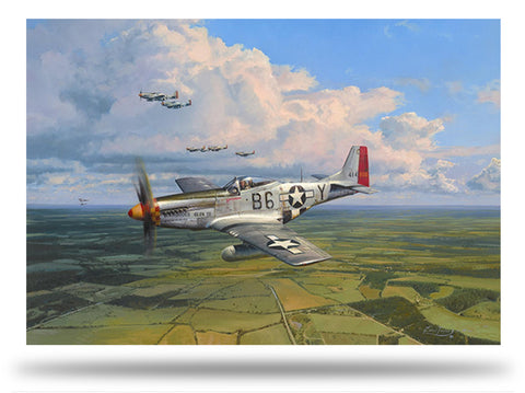Image of Robert Taylor American Eagles Signed Limited Edition Art Print P51 Mustang A20 Aviation Art full print