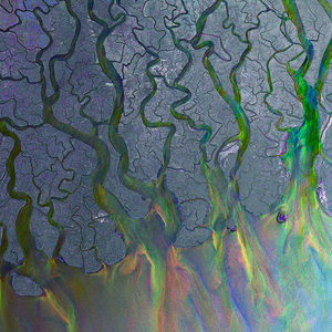 Alt-J - An Awesome Wave: Gatefold Music (Hitchin's Independent Record Shop - Vinyl Records and Accessories)