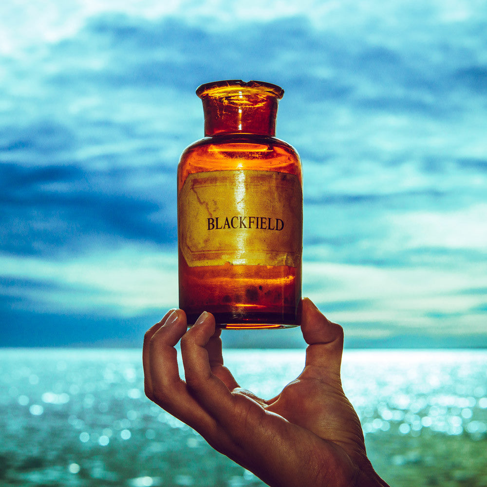 Blackfield - V: Gatefold Music (Hitchin's Independent Record Shop - Vinyl Records and Accessories)