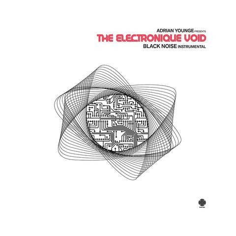 Adrian Younge - The Electronique Void: Black Noise Instrumental: Gatefold Music (Hitchin's Independent Record Shop - Vinyl Records and Accessories)