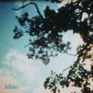 Bibio - Fi: Gatefold Music (Hitchin's Independent Record Shop - Vinyl Records and Accessories)