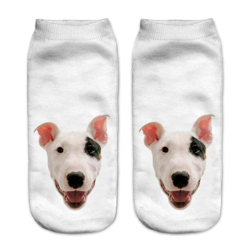 Bull Terrier Dog Women Socks - boopetclub