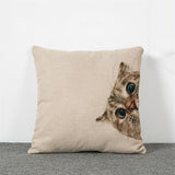 Pug Frenchie Pillowcase / Cat Cushion Pillow Case - boopetclub
