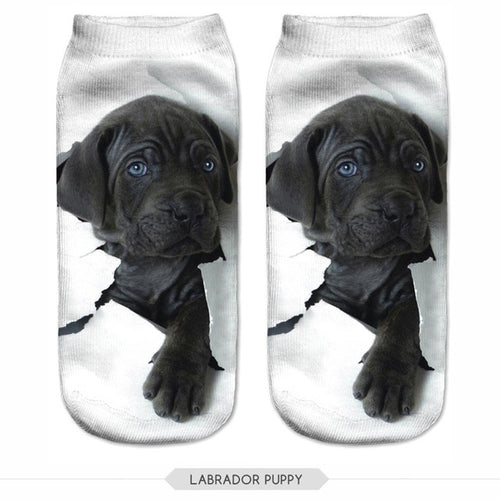 Black Labrador Retriever Dog Women Socks - boopetclub