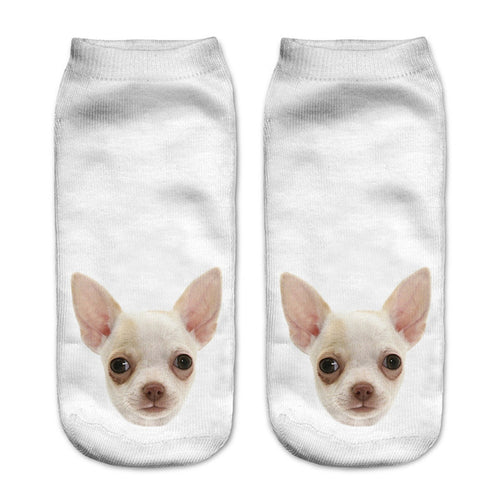 Chihuahua Dog Women Socks - boopetclub