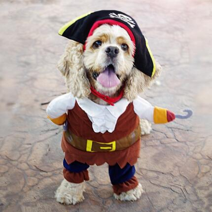Pirate Pet Costume, Dog and Cat Clothes, Dog Halloween Costume - boopetclub