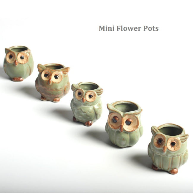 5 Pieces Owl Animal Mini Ceramic Plant Flower Pot Home Decor - boopetclub