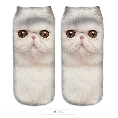 White Persian Cat Socks