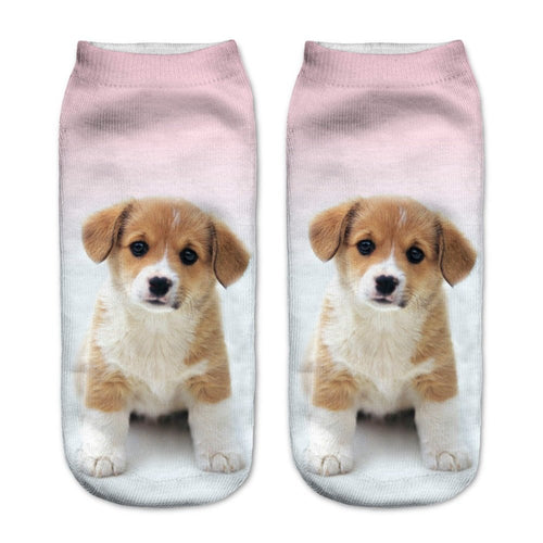 Corgi Puppy Dog Women Socks - boopetclub