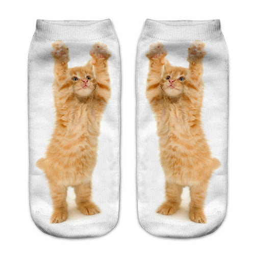 Cat Women Socks - boopetclub