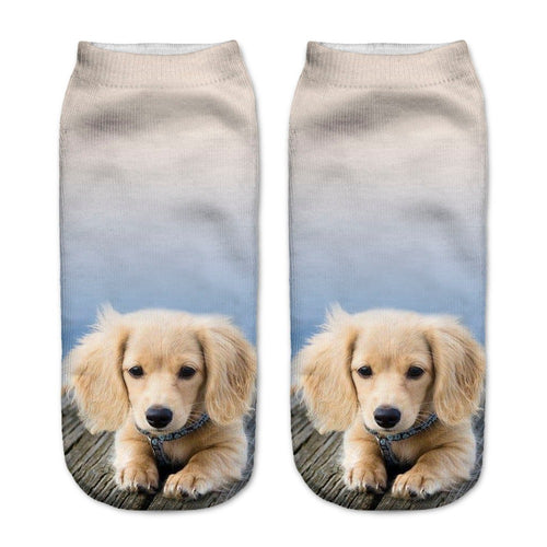 Dachshund Doxie Dog Women Socks - boopetclub
