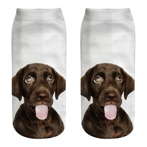 Chocolate Labrador Women Socks - boopetclub