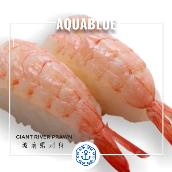 玻璃蝦刺身 ~170g [解凍即食] | Giant River Prawn Sashimi ~170g [Edible after thawing]