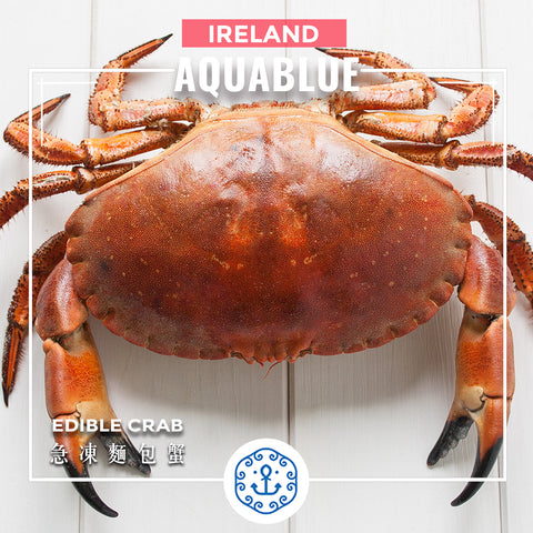 愛爾蘭急凍麵包蟹 (熟) 400-600G [解凍即食] | Ireland Frozen Edible Crab (Cooked) 400-600G [Edible after thawing]