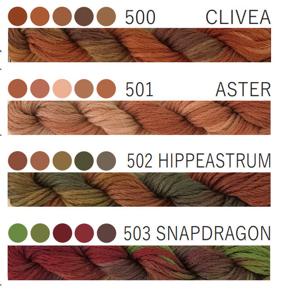 Aster 501-Cottage Garden Threads-CGT-6 Strand Cotton embroidery thread-Hand Dyed Thread-hand dyed cotton-online quilting Australia