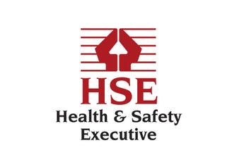 Who are the Health and Safety Executive (HSE)?