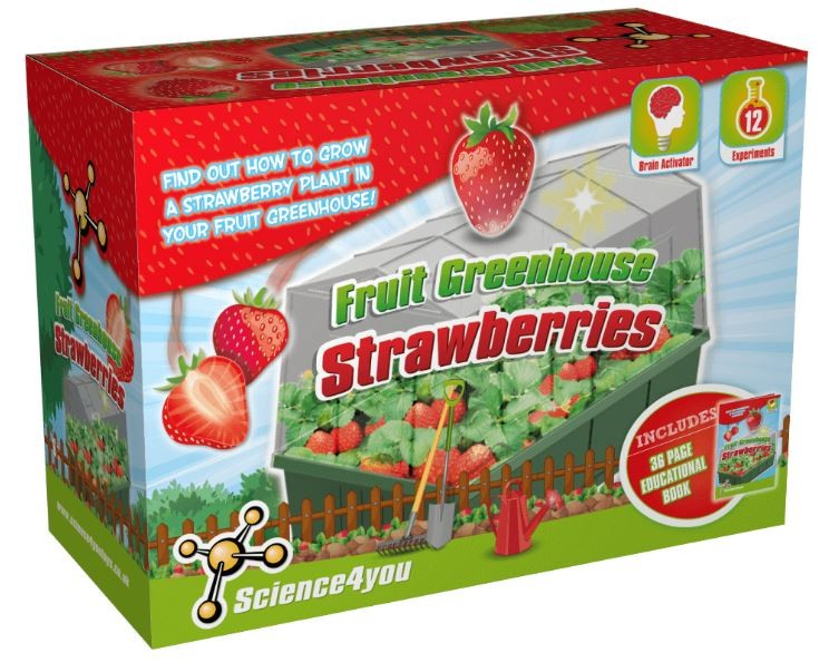 Science4You Fruit Greenhouse Strawberries - Kids Educational Toys