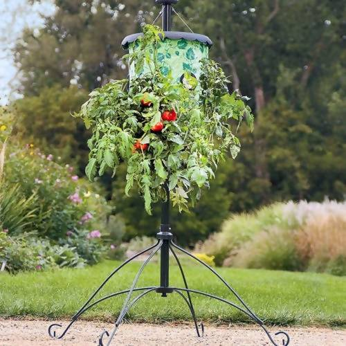 Planters Growers Upside Down Topsy Turvy