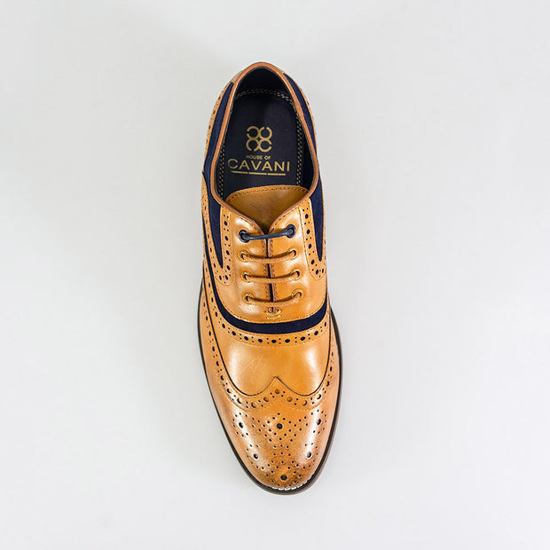 Ethan Xl Tan Navy Brogue Shoes