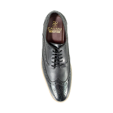 Tommy Black Signature Shoes