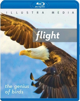 Flight: The Genius of Birds Blu-ray