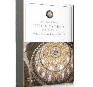 Mystery of God with Father Robert Barron picture of Catholic DVD cover