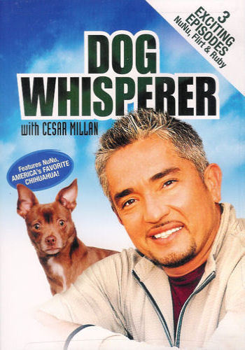Dog Whisperer with Cesar Millan  - DVD
