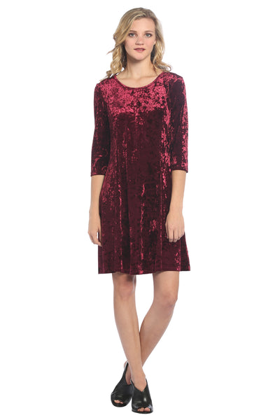 Velvet Princess Seam Dress in Maroon