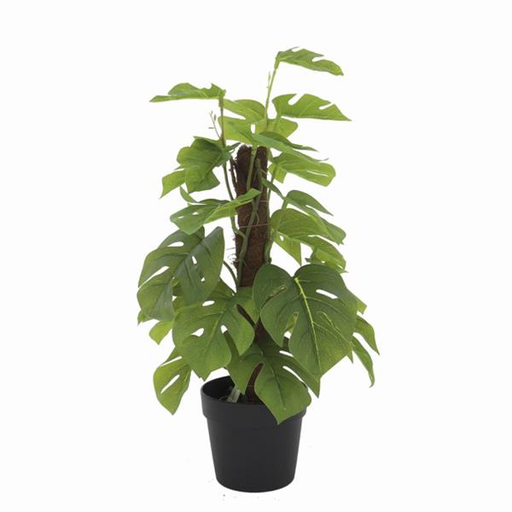 MACETERO CON PLANTA ARTIFICIAL (MONSTERA LEAF)