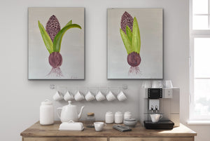 Organic Hyacinth Bulb Original Canvas Pair By Kerrie Griffin