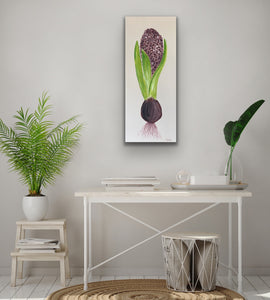 Organic Hyacinth Bulb Original Canvas By Kerrie Griffin The Interior Co