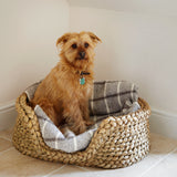 : Rush Pet Basket