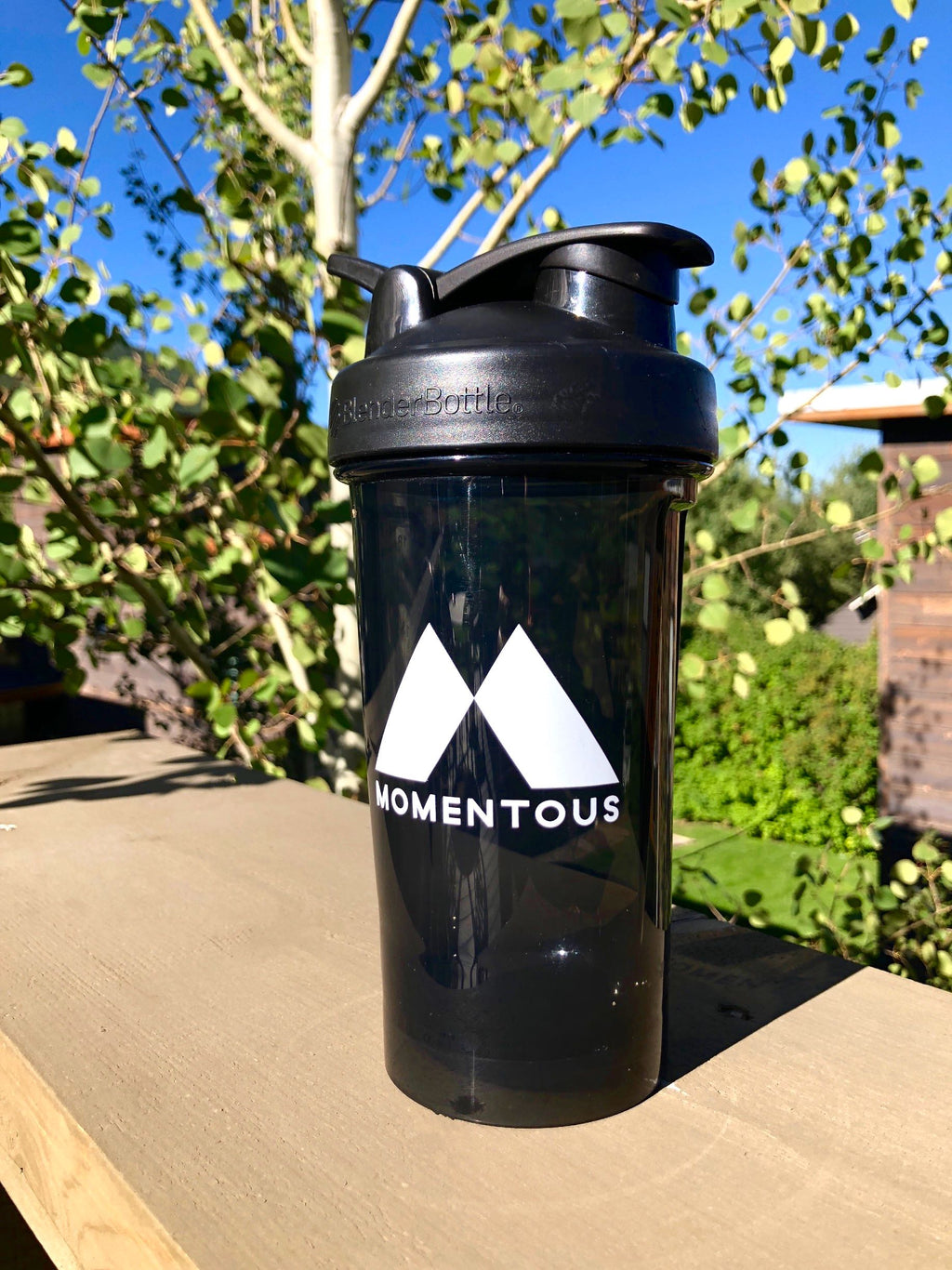 Momentous Custom 24oz Blender Bottle