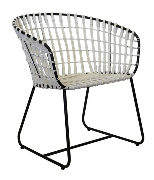 Pol Chair (Colour White With Black Frame) Occasional Chairs