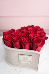 Limited Edition Red Rose Heart Box