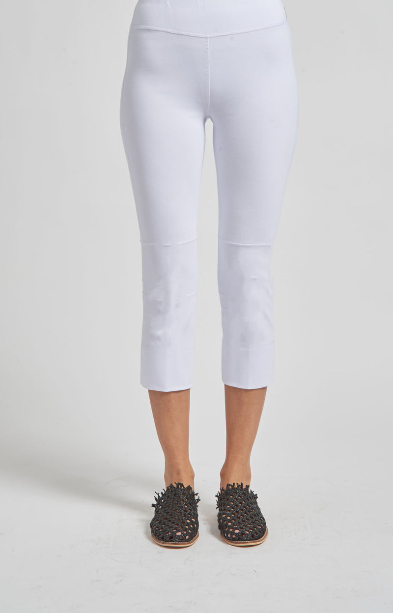 Cropped Pant with Seams
