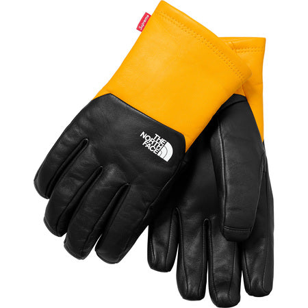 Supreme x North Face Leather Gloves
