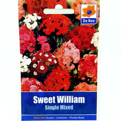 Sweet William Single Mixed