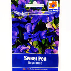 Sweet Pea Royal Blue