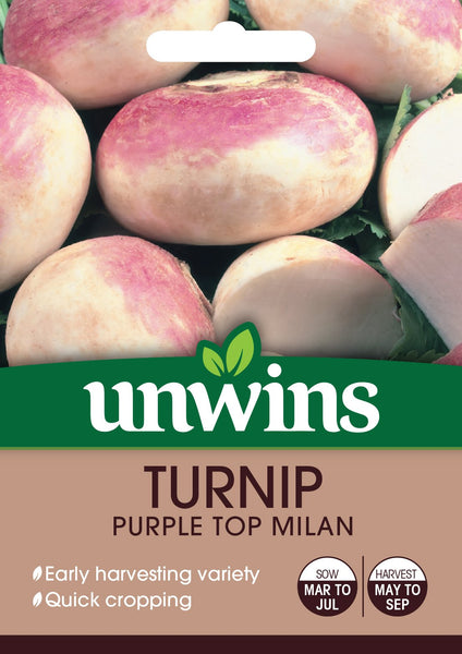 Unwins Turnip Purple Top Milan