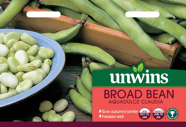 Unwins Broad Bean Aquadulce Claudia