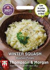 Squash Mashed Potato (Winter)