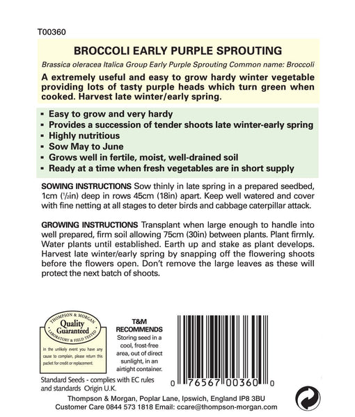 Broccoli Early Purple Sprouting Heads