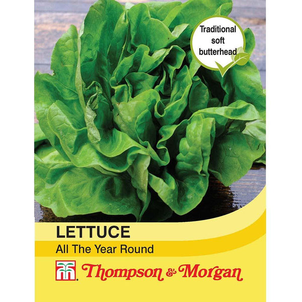 Lettuce All Year Round - Hardy